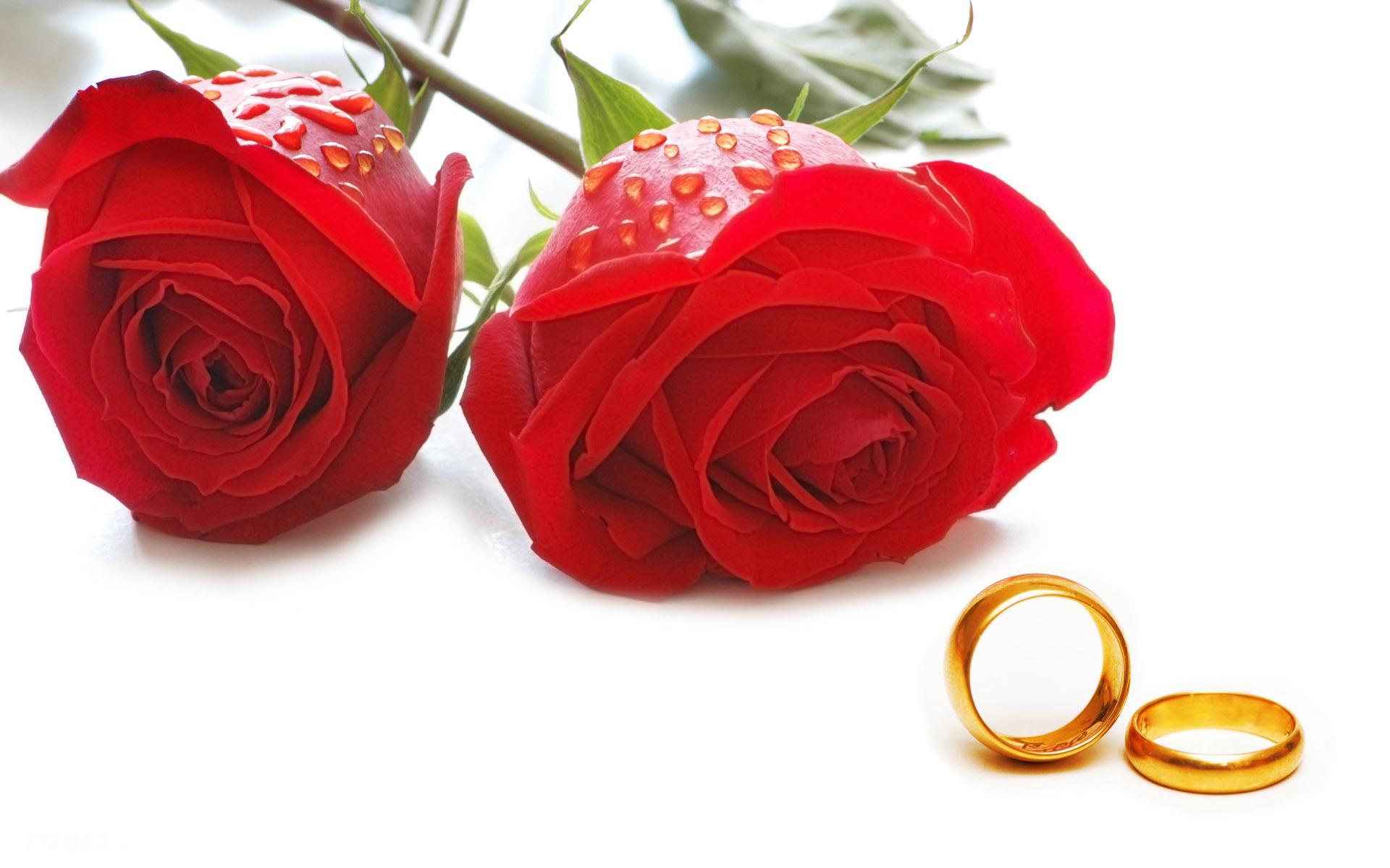 ازدواج زوج گنابادی در کنار مزار شهدای گمنام